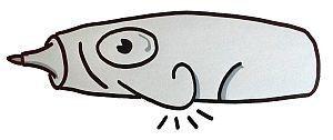 Neuland Flipchart Stifte rollen nicht weg